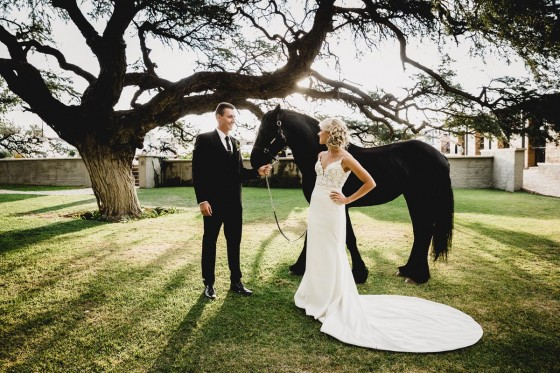 BJ Wedding 593